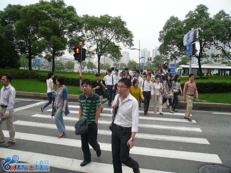 上海街头随拍 感觉国内人行道的红绿灯应该取消了 华人感高清图片