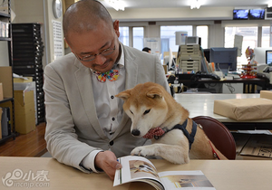 柴田部长写真集暖化人心 呼吁关注保护犬
