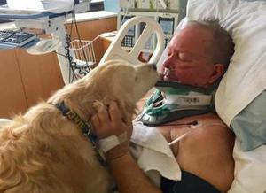 男子摔倒瘫痪 狗趴身上暖了他20个小时
