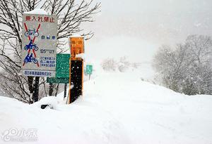偏日本海地域大雪 60辆车被困鸟取高速