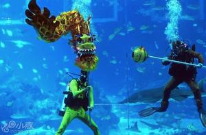 新加坡海洋馆水中舞龙庆新年