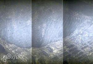 福岛反应堆辐射严重 每小时最大530西弗