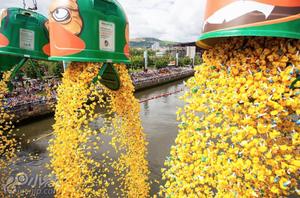 西班牙举办3万只小黄鸭游泳比赛筹善款