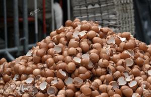 比利时小镇用6500个鸡蛋制作煎蛋饼