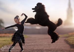 俄罗斯贵宾犬搭档小主人跳芭蕾 画面唯美