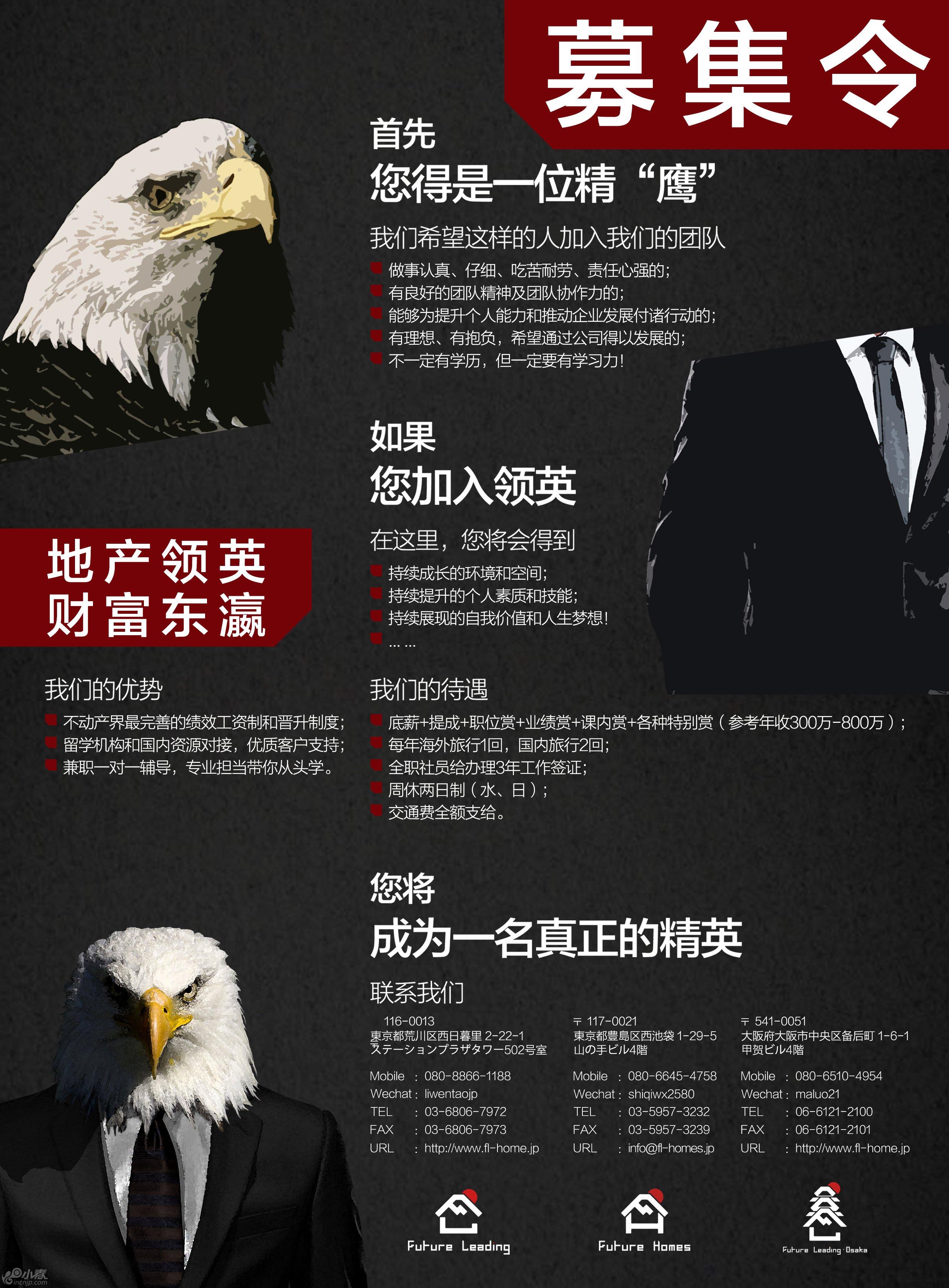招聘海报 黑鹰版.jpg