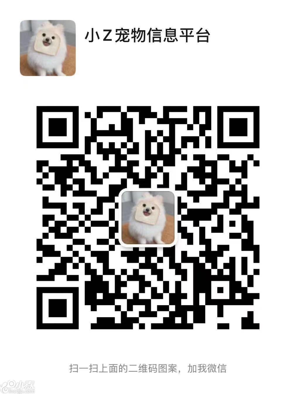 27311371-1E23-4E85-9A4A-B468B878C3AA.jpeg