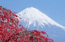 日本语常用口语300句(11)