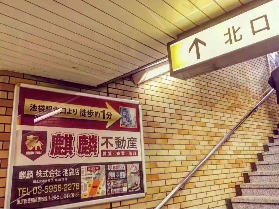 麒麟株式会社 池袋店 新大久保店
