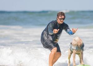 美国举办狗狗冲浪大赛