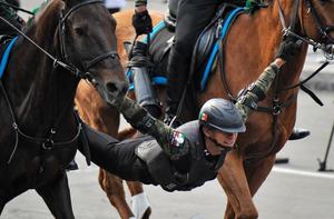 """墨西哥阅兵式 骑兵""""失足""""连人带马栽倒在地"""