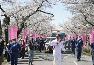 东京奥运圣火樱树林下传递