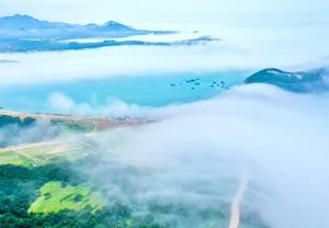 航拍海雾中的山东荣成成山头