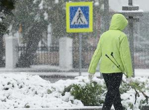 俄罗斯多地迎来降雪天气
